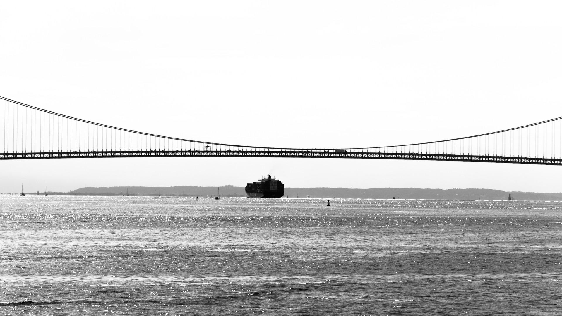 Staten Island Bridge