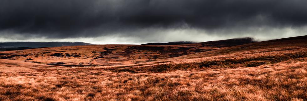 IMGGBIS_8148-Panorama-2-3.jpg