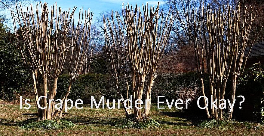 crepe-murder-spring-90.jpg