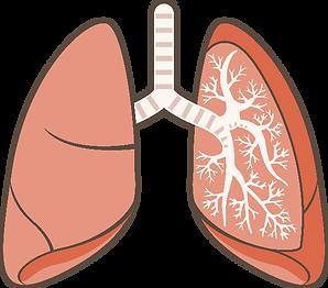 ときえだ小児科クリニック 肺・気管支