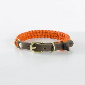 """Hundehalsband """"Touch of Leather"""", Pumpkin 
