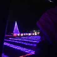 christmas-light-drive_t20_98x6dO.jpg
