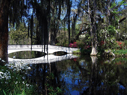 Magnolia_Plantation_Bridge (1).jpg