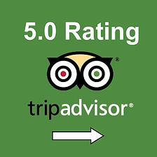 TripAdvisor Reviews for Charleston Pirate Tours Link