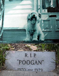 Poogan's Porch is also home to the ghost of Miss Zoe.