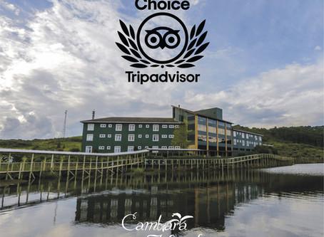 Cambará Eco Hotel ganha o Tripadvisor Travelers' Choice Award 2020