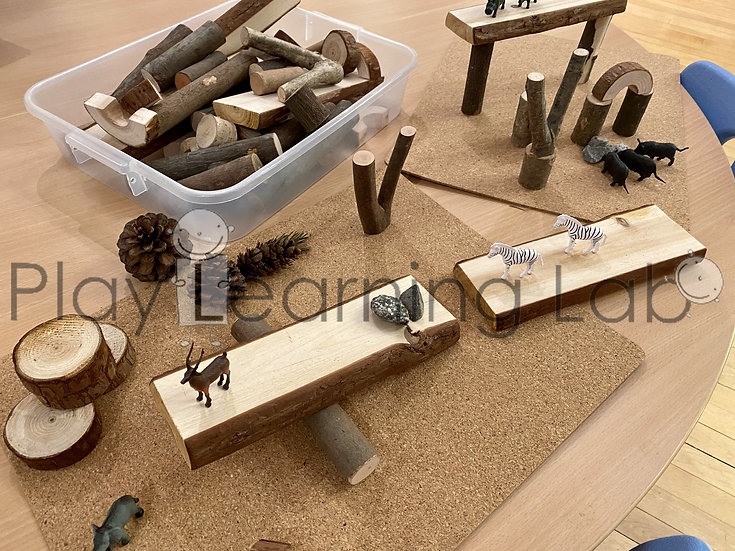 Nature-Inspired Wooden Toy Block Play