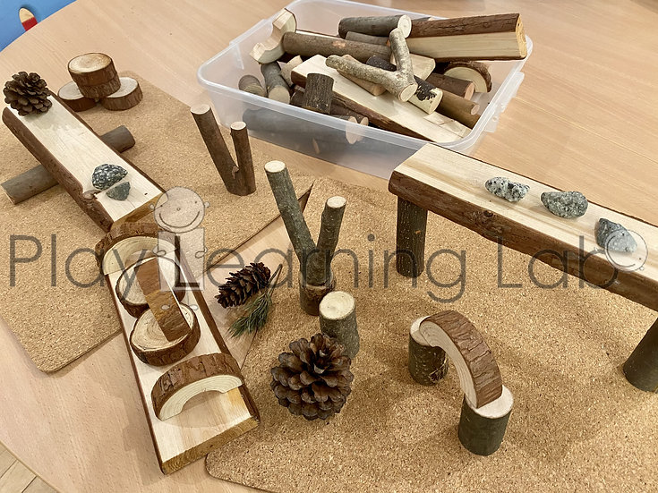 Building with Wooden Blocks and Natural Materials