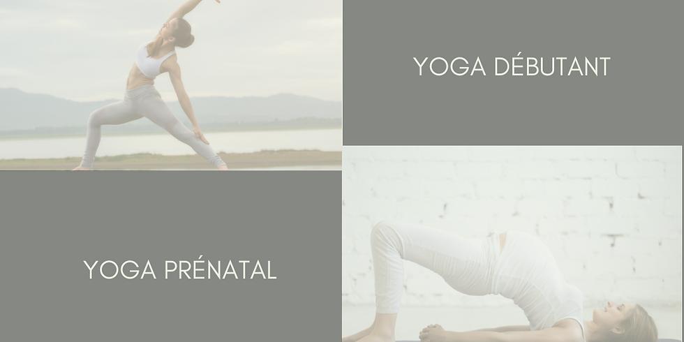 Yoga flow débutant & prénatal