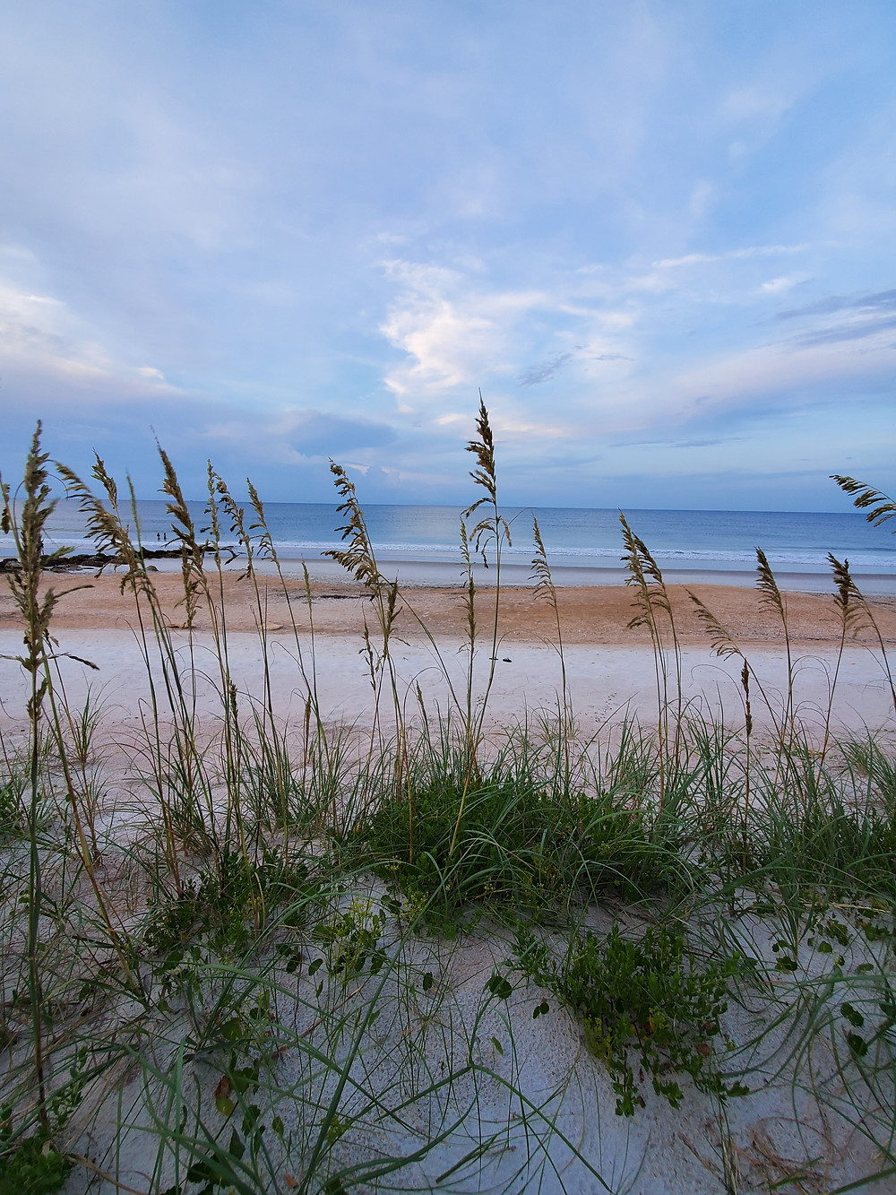 Photo near Saint Augustine, Florida by Nayana Sen