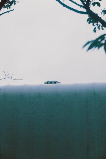 _MG_9560.jpg
