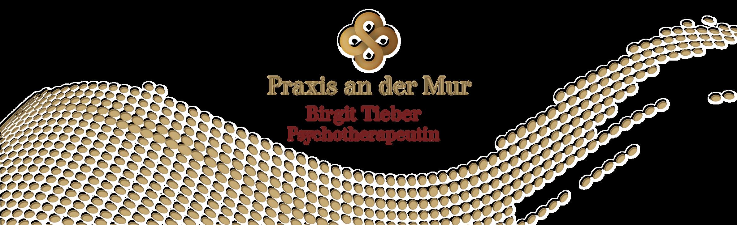 praxis-an-der-mur.png