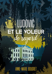 Ludovie-et-le-voleur-ebook.jpg