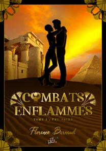 Combats-enflammésT3-ebook.jpg