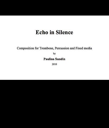 Echo in Silence