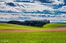 Landschaft (17 von 46).jpg