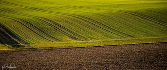 Landschaft (16 von 46).jpg