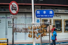 China 2013 (23 von 115).jpg
