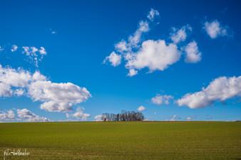 Landschaft (21 von 46).jpg