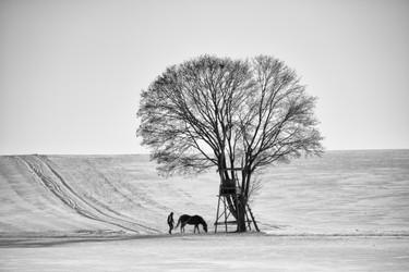 Landschaft (2).jpg
