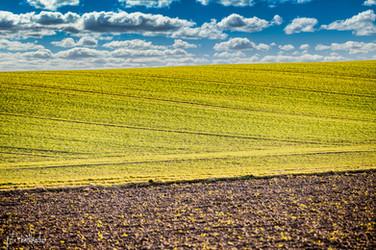Landschaft (5 von 46).jpg