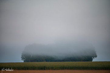 Landschaft (41 von 46).jpg
