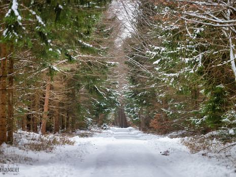 27.Januar erste Radltour 2021 / Dachauer Hinterland