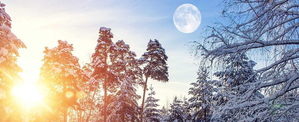 snowshine_2450x1000.jpg