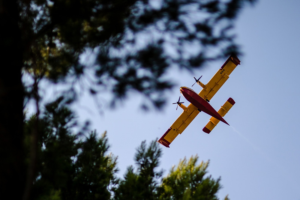 Fire plane in Croatia flying over pine trees