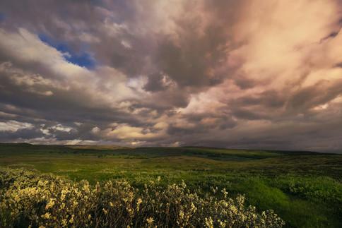 Islanda_2015-283-1.jpg
