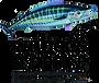 WAH Logo.png