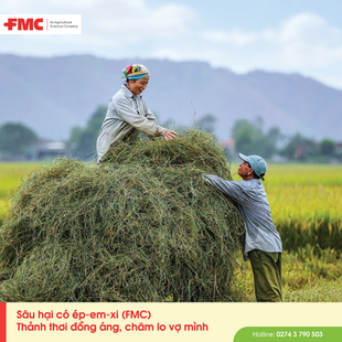 FMC Post 24.png