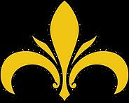 Logo Irisgo 1@2x.png
