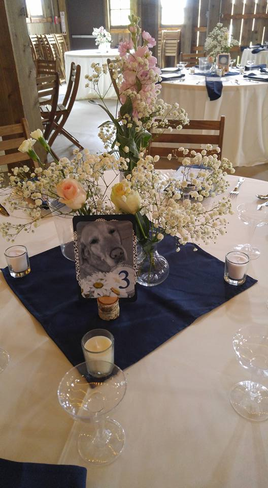 Rose and babies breath centerpiece