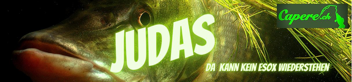 JUDAS(4) 180x40.png
