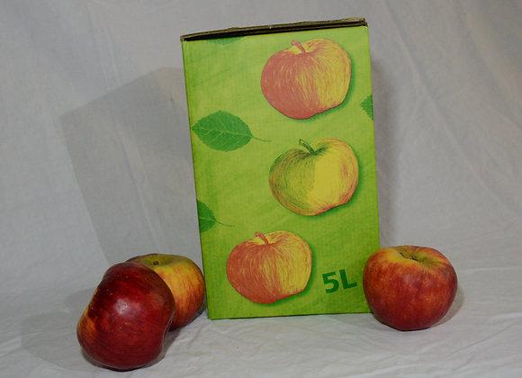 Apfelsaft (5l)
