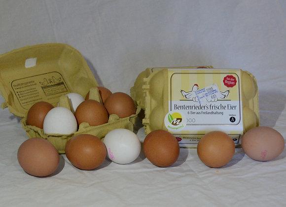 Eier auf Freilandhaltung