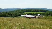 Three NH Farms