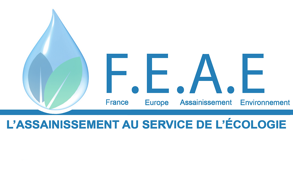 LOGO avril 2019 FEA.png