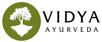 vidya.png