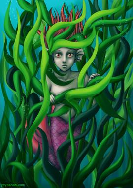 Hidden Mermaid