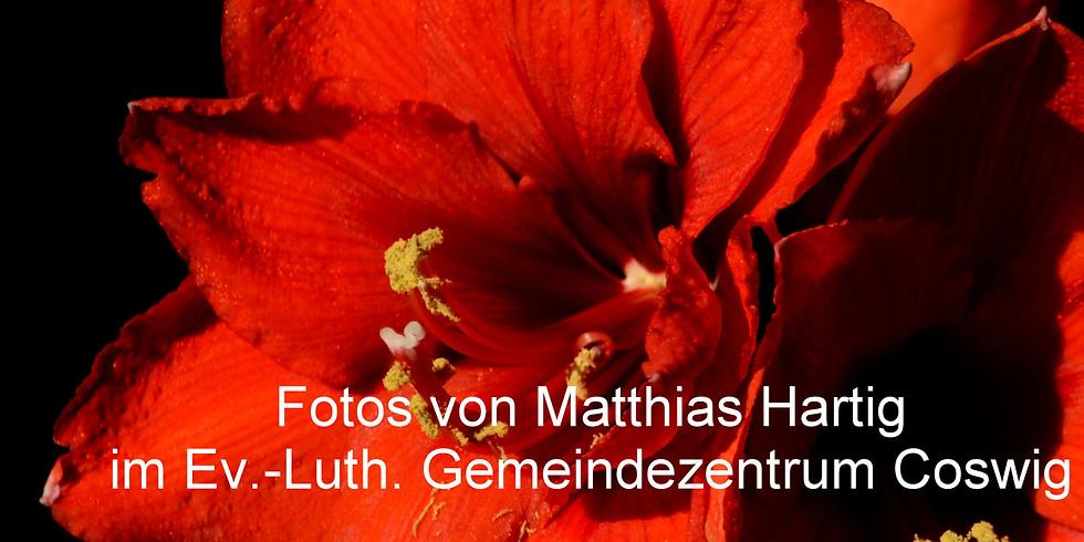 """Vernissage """"Im Winter Blumen sehen"""""""