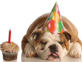 1 Year Anniversary & Customer Appreciation Party!