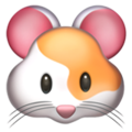 hamster-face_1f439.png