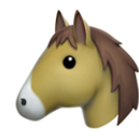 horse-face_1f434.png