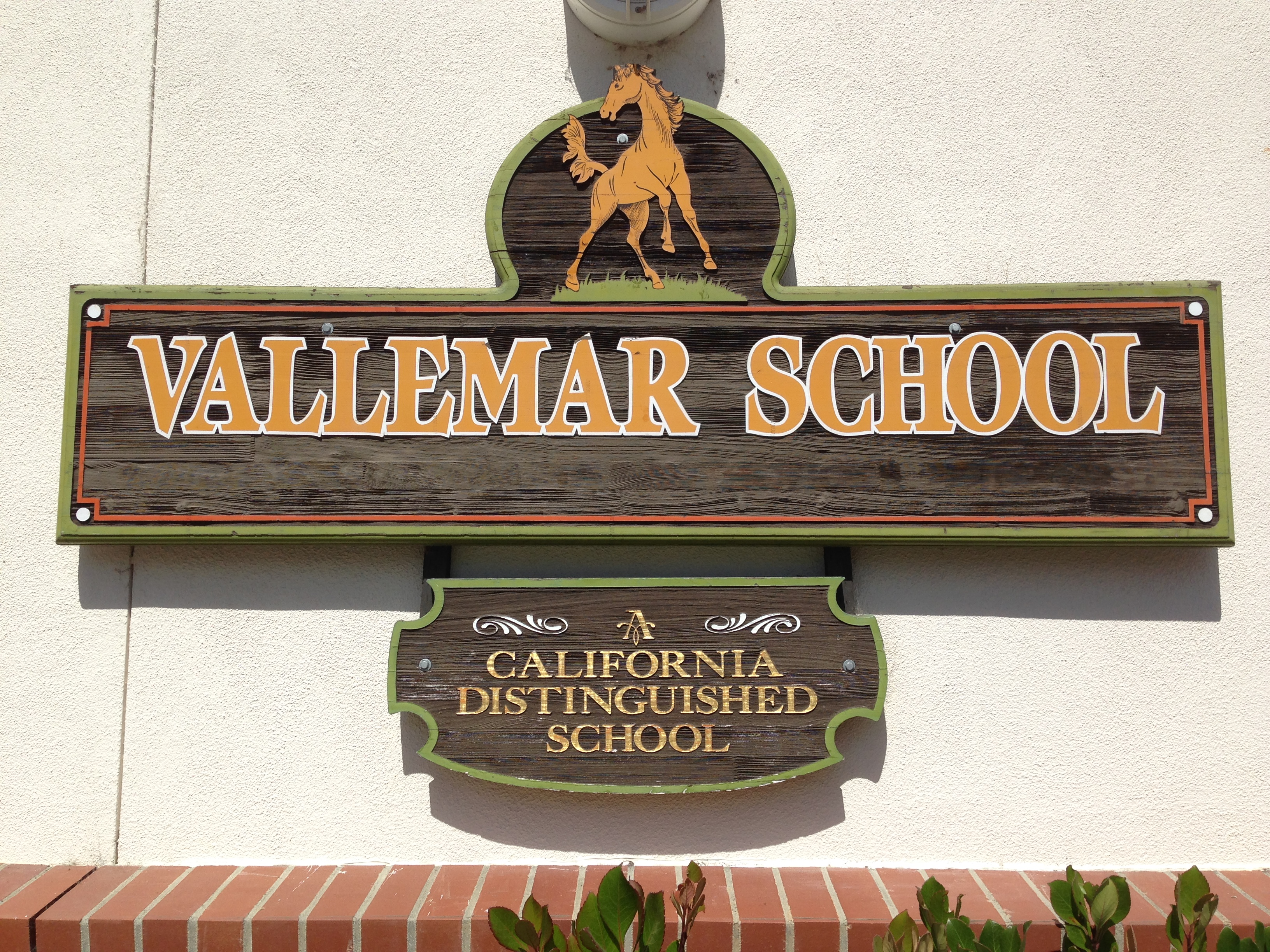 We Love Vallemar!