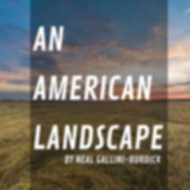 americanlandscapecompressed.jpg