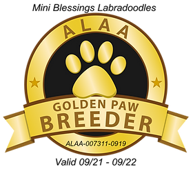 Mini Blessings GOLDEN PAW 2021.png