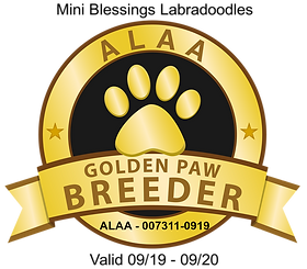 Mini Blessings ALAA GOLDEN PAW LOGO Mast