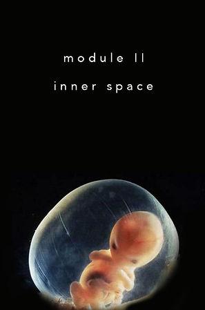 BT-module-2.jpg
